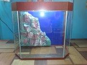 Шестиугольный аквариум.
