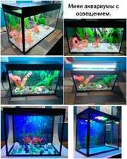Мини-аквариумы с освещением.